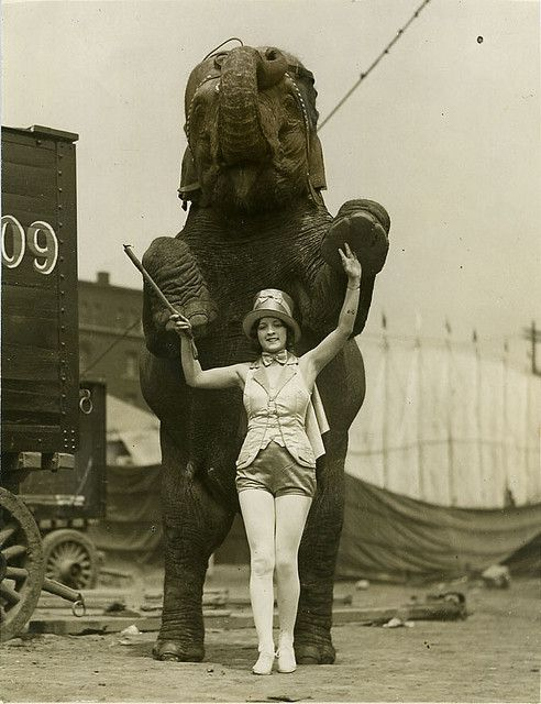 1930's Lillian Burlsem Circus please stop the abuse of circus animals by boycotting current circuses that use animals in their acts