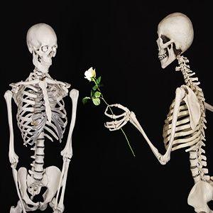 """Chiropratica (dal greco cheir, mano e praxis, azione: trattamento con le mani) e Osteopatia (""""osteon"""" osso, e """"pathos"""" sofferenza) si prefiggono come obbiettivo quello di ripristinare lo stato di salute del paziente stimolandone il potere di autoguarigione. Quello che cambia tra queste due discipline è la modalità con la quale cercano di raggiungere tale scopo. …"""