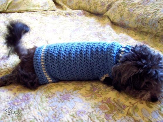 This sweater is designed for dogs (and cats) who weigh 8-16 lbs. It measures 15.5 inches long and 8 inches wide (laying flat): free crochet pattern