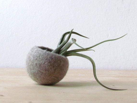Beige Felt cactus planter / felted bowl / by theYarnKitchen, $21.00