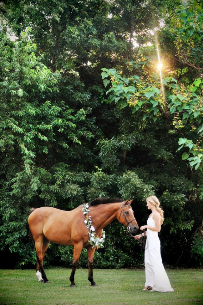Beautiful shot of bride with her horse