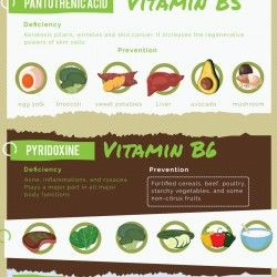 This is a roundup of all the vitamins and how they can positively impact skin…
