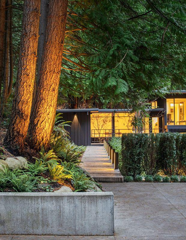 This Lush West Coast Garden Doubles As An Enchanted Forest Landscape Lighting Design Landscape Lighting Landscape Design