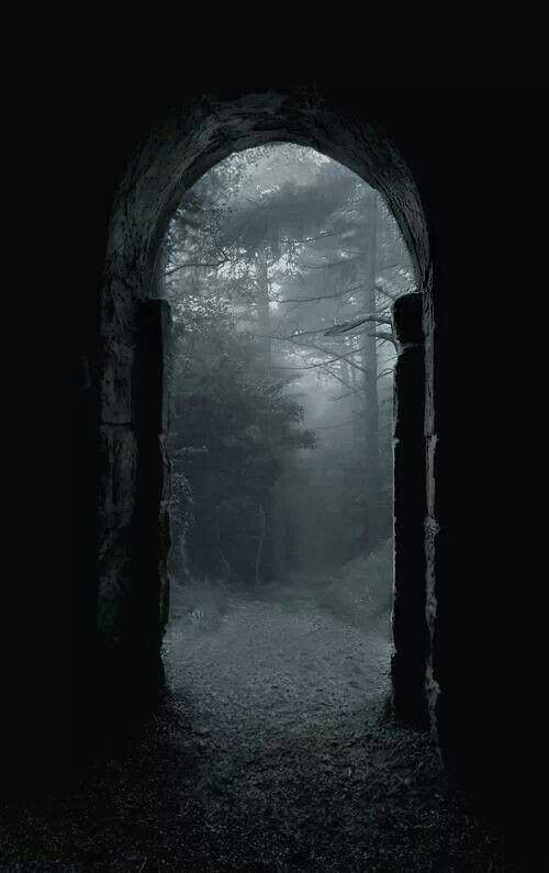 Darkness forest the gate