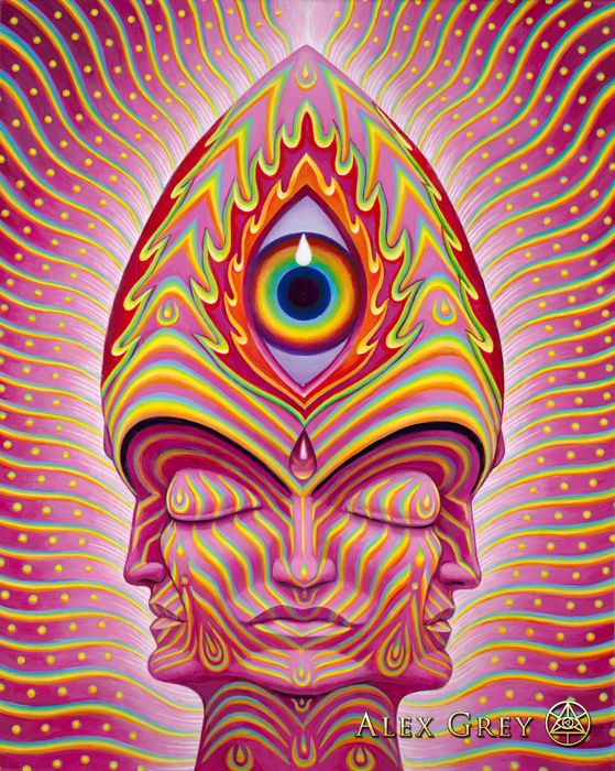 alex grey essay Lsd helped forge alex grey's spiritual, artistic and love lives the greys host regular full and lsd helped forge alex grey's in an essay of yours.