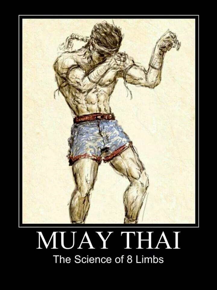 Muay Thai - 8 limbs