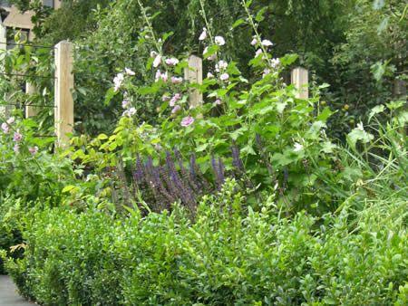 Duncan Terrace | Projects | Richard Miers - Garden Design