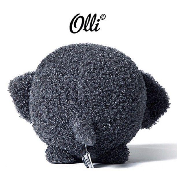 #olli #feyenoord
