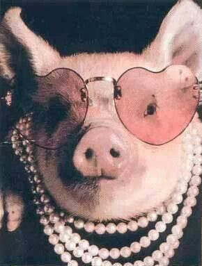 Pink Pig With Pearls & Pink Glasses