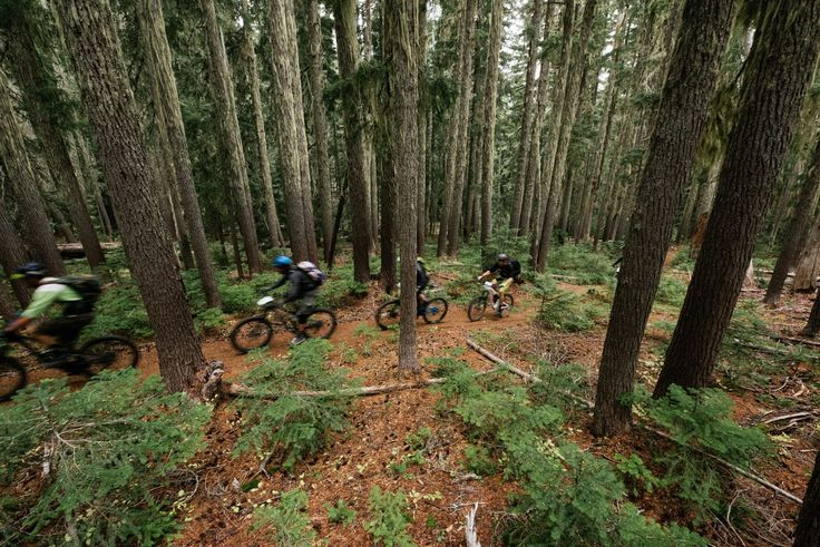 Trans-Cascadia a 4 day mt bike race in the PNW backcountry that provides an unparalleled experience for racers while supporting the advocacy of local trails