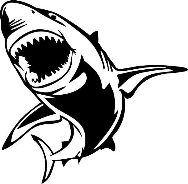 Polynesian Sharks Mouth By Cameron Rutten: Shark Shaped Icon – Amee House