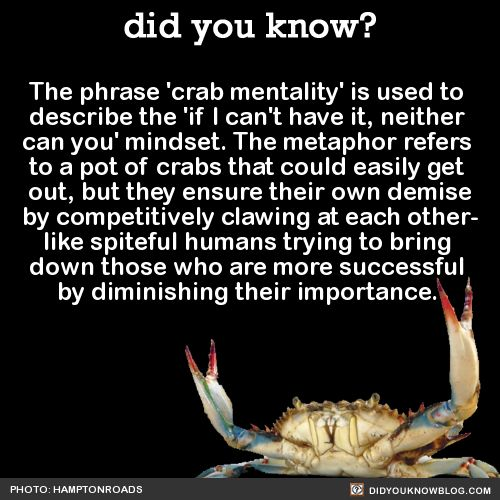 The phrase 'crab mentality' is used to describe the 'if I can't have it, neither can you' mindset. The metaphor refers to a pot of crabs that could…