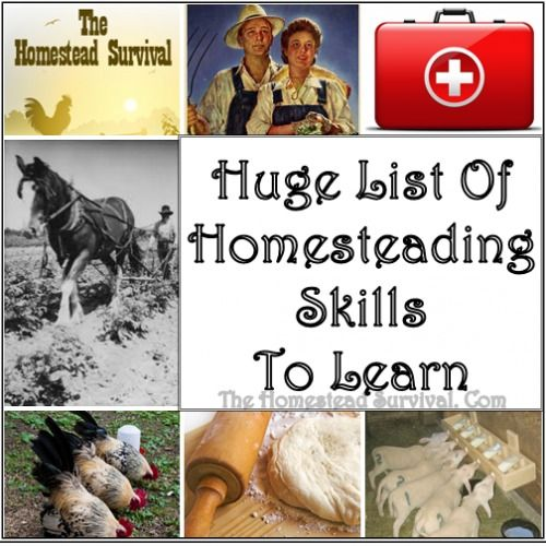 Huge List of Homesteading Skills to Learn - The Homestead Survival