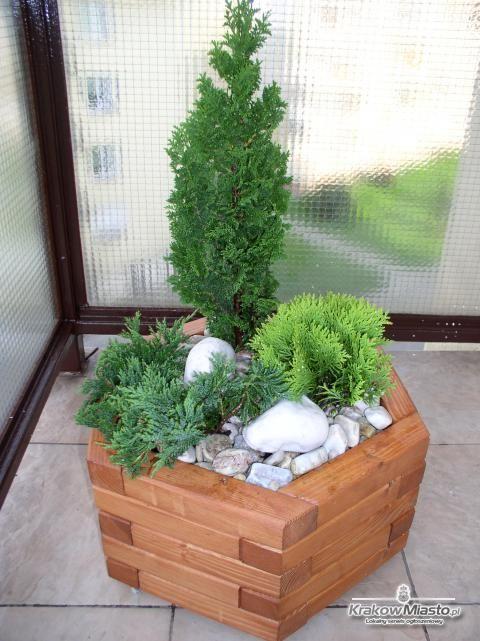Donice ogrodowe na balkon, taras. Kompozycje w donicach. Iglaki - gotowe aranżacje - Kraków:  Flowerpot