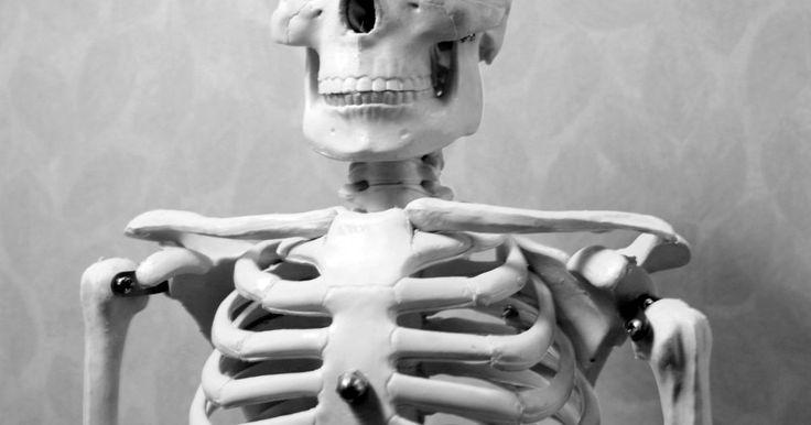 ¿Qué tipo de articulación es la articulación esternoclavicular?. La articulación esternoclavicular (EC) conecta la clavícula con el hueso largo que va hacia el centro del pecho (esternón). Dos articulaciones EC, una del lado izquierdo de tu cuerpo y una del lado derecho conectan los huesos del brazo y del hombro al esqueleto vertical. También sostiene los hombros. Las bandas duras y fibrosas (ligamentos) ...