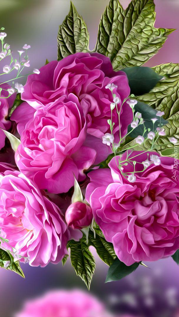 Rozwiniete Roze Tapeta Na Telefon Flowers Rose Plants