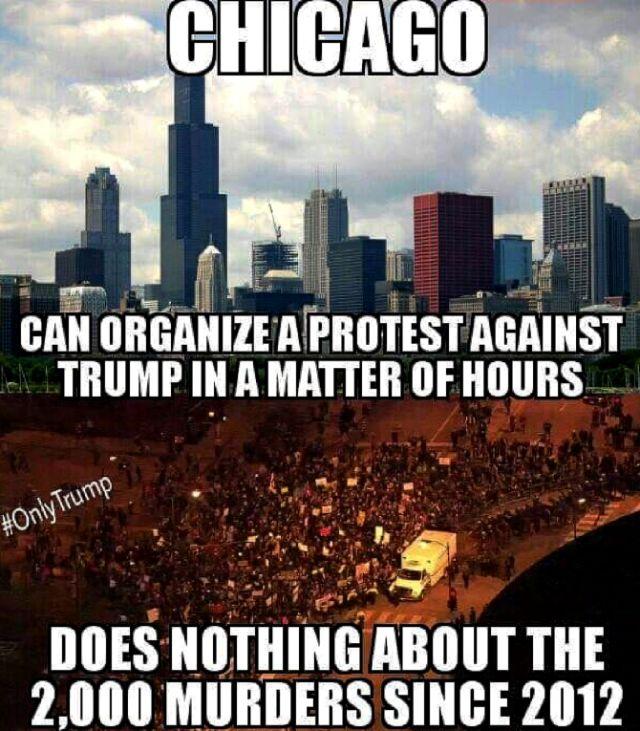 trump chicago protest murders