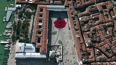 A giant rosebud at San Marco Piazza in Venice. San Marco Square in Venice will become a canvas for a beautiful artwork. On April 25th, St. Mark's Day – the patron saint of Venice...