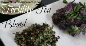 Fertility Tea Blend {recipe}. #fertility #TTC #tea