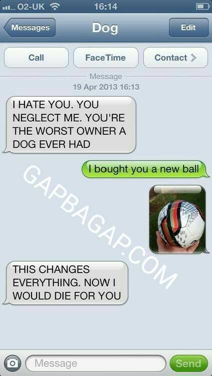 5+ Hilarious Text Messages About Dogs
