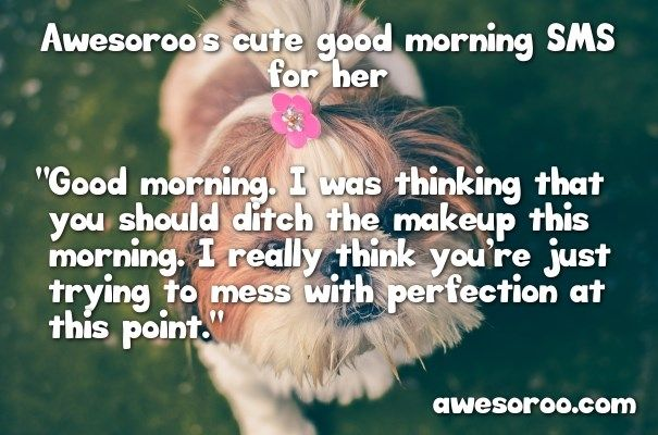 cute pug with quote