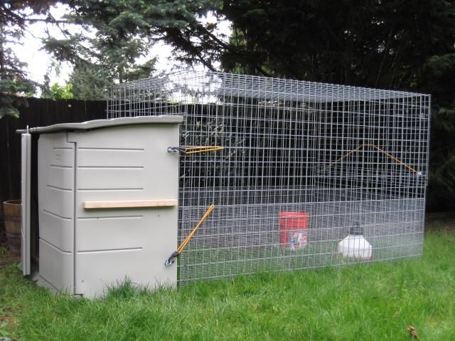 DIY chicken coop that uses a rubbermaid storage shed.