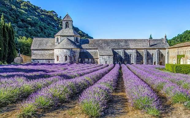 Planning a holiday to France? Read our guide to the best regions, including expert advice on where to go on the Côte-d'Azur and Aquitaine Coast, in Provence, Languedoc-Roussillon, Brittany, Normandy, Burgundy and the Dordogne. By Anthony Peregrine, Telegraph Travel France expert.