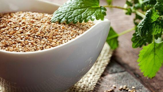 Top 10 des aliments riches en fer   - Infos et conseils nutrition - Canal Vie