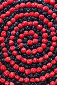 delicious fruit foods tumblr - Google Search