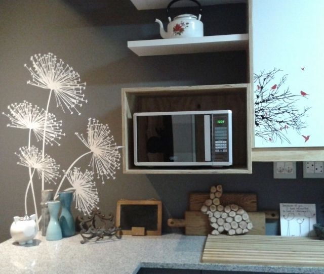 dandelion on a kitchen wall
