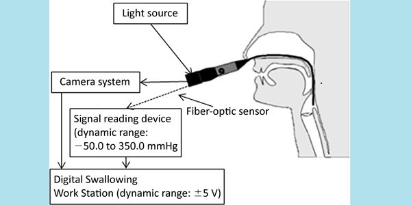 Variability of the Pressure Measurements Exerted by the Tip of Laryngoscope During Laryngeal Sensory Testing: A Clinical Demonstration | American Journal of Speech-Language Pathology | ASHA Publications