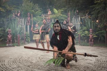 Rotorua Maori Hangi Dinner and Performance - Rotorua | Viator