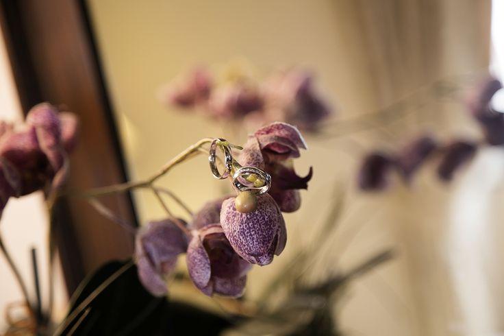 Purple Orchid http://blancricevimenti.it