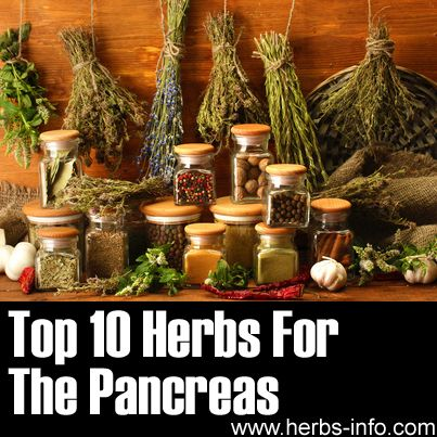 Herbs For Pancreas - detailed list with research, references and background info.