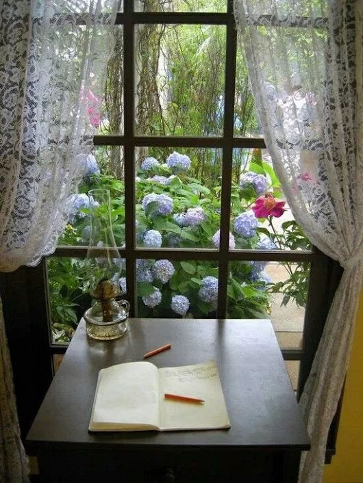 I could see this same scene looking thru my mothers bedroom Window.My dad had a green thumb and grew these same flowers the same color,beayuiful!