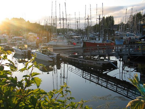 Find Affordable accommodation and Lodging at Tofino Hotel!