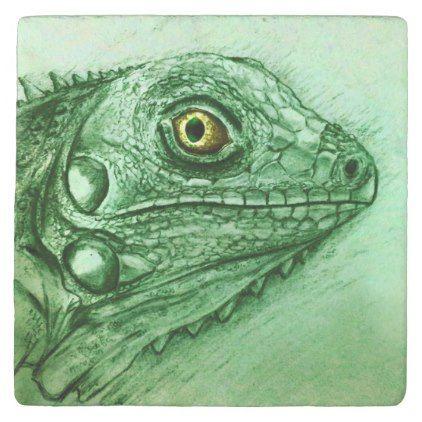 Green Iguana Stone Coaster Realistic Drawing