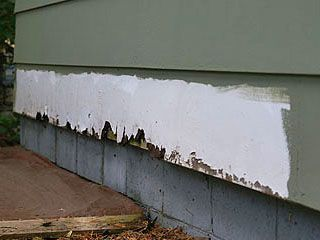 Masonite siding with rot or water damage.