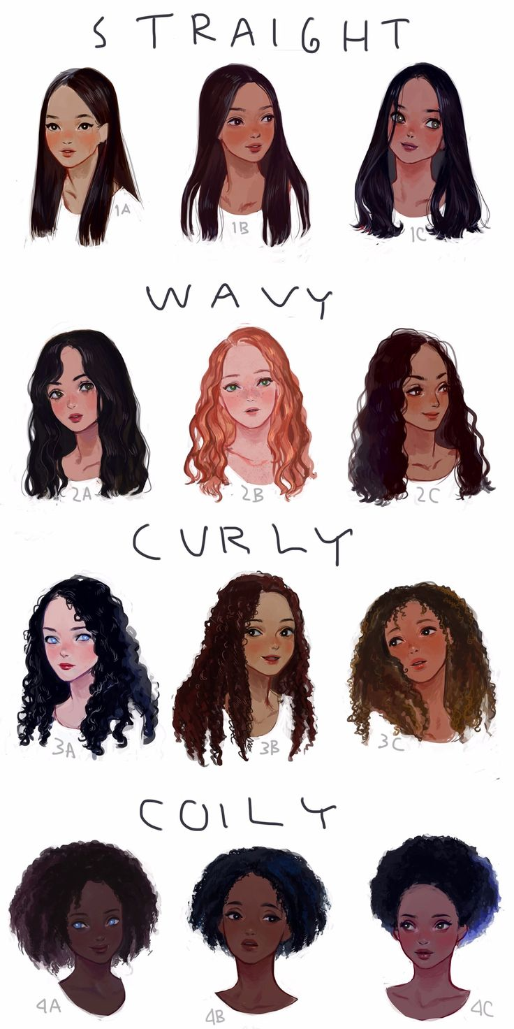 different kinds of hair style eafrns i drew a visual hair type classification guide i 8776 | 6b7120e9bb3646cacbd7dc5c8c0515c5 hair type art tutorials
