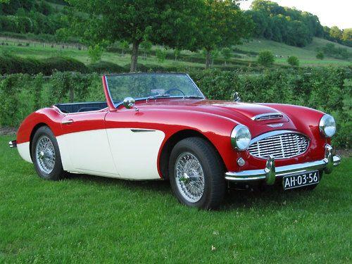 1952 Austin Healey 100