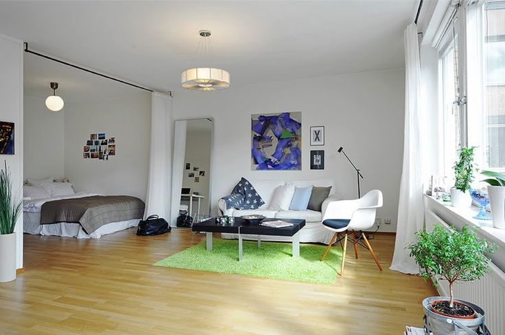 Bedroom and Living space with curtain divider