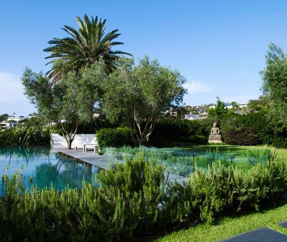 Landscape and pool in Australia by William Dangar + Associates