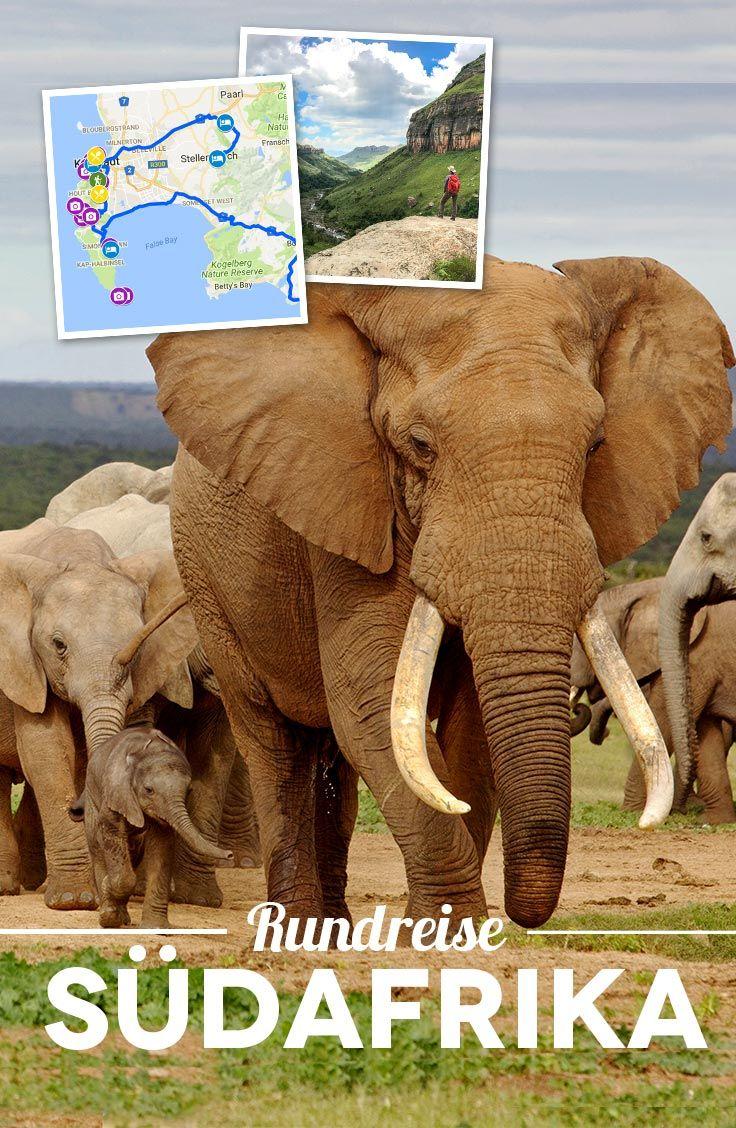 Südafrika Rundreise Highlights: In 3 Wochen von Johannesburg nach Kapstadt [+ Route & Tipps]