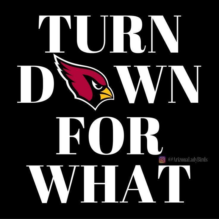 Arizona Cardinals 'Turn Down for What' 2016  Cards Super Fans @ArizonaLadyBirds #AZLadyBirds