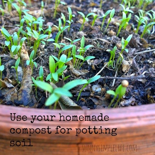 frugal planting tips for spring use homemade compost for potting soil