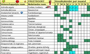 Snoeikalender voor fruitsoorten, houtig kleinfruit, druiven en noten. Inheems en uitheems fruit. Snoei kalender fruitbomen en fruitstruiken. Pdf te downloaden op: http://www.houtwal.be/fruitteelt_images/fruitsnoeikalender.pdf
