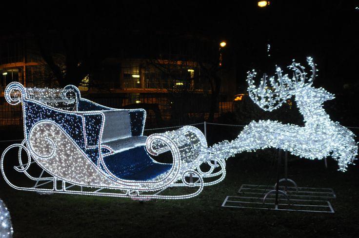 A reindeer and Santa's sleigh at St Hilda's Church Gardens Christmas Wonderland lighting. #Christmas #southtyneside #illuminated