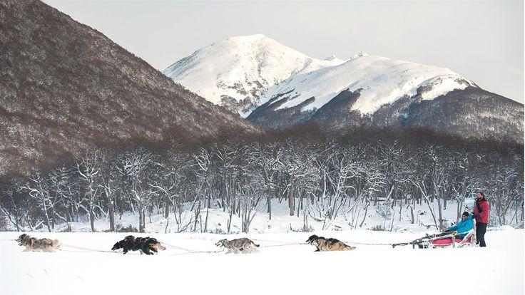 Cuentos del fin del mundo-Ushuaia  La nieve llegó para quedarse hasta bien entrado octubre, mes en el que aún se disfrutan los  paseos en trineos tirados por perros Rogelio Espinoza