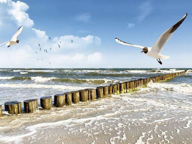 Poster oder Leinwandbild »DeVIce: Ostsee«