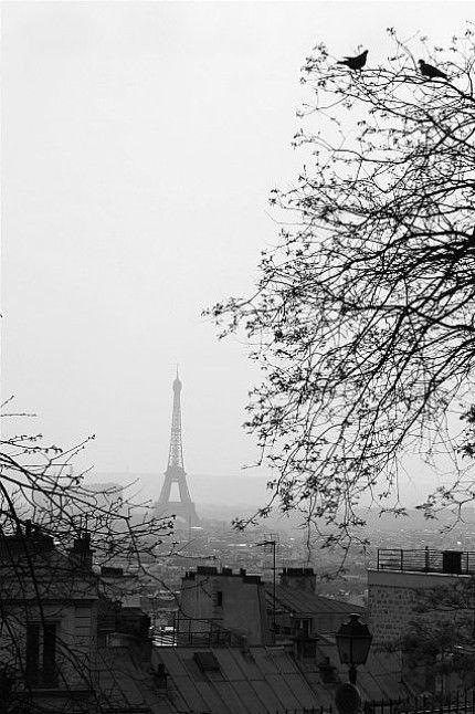 Le silence noir et blanc de Paris.